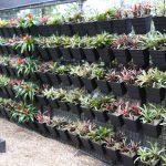 Wallgarden Green Wall Products